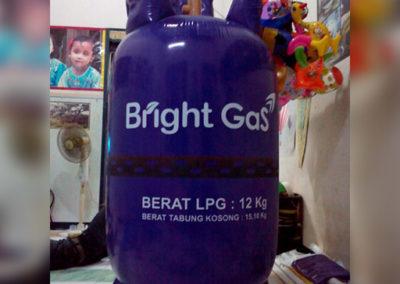 Jual Balon Botol Karakter Untuk Promosi (6)